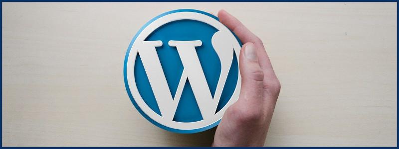 Katalog Stron UE Katowice - Zdjęcie główne do artykułu: Czym jest WordPress Multisite